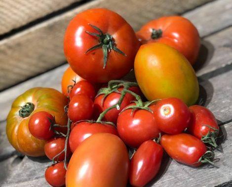 tomates-vrac